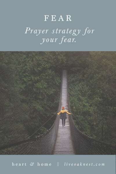 Fervent: Prayer Strategy for Your Fears