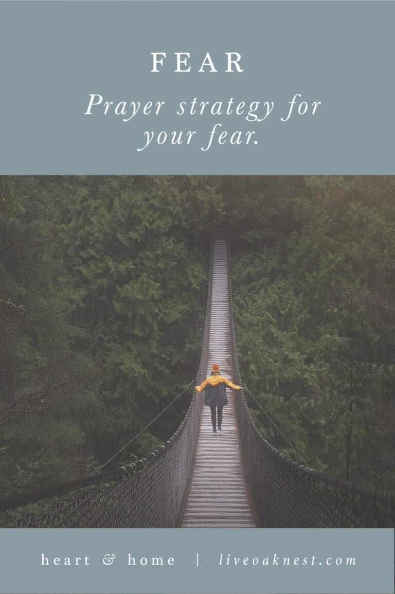 Prayer Strategy for Fears