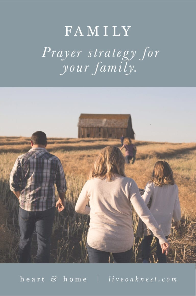 Prayer Strategy for Family