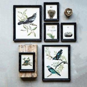 Bird Artwork from Antique Farmhouse
