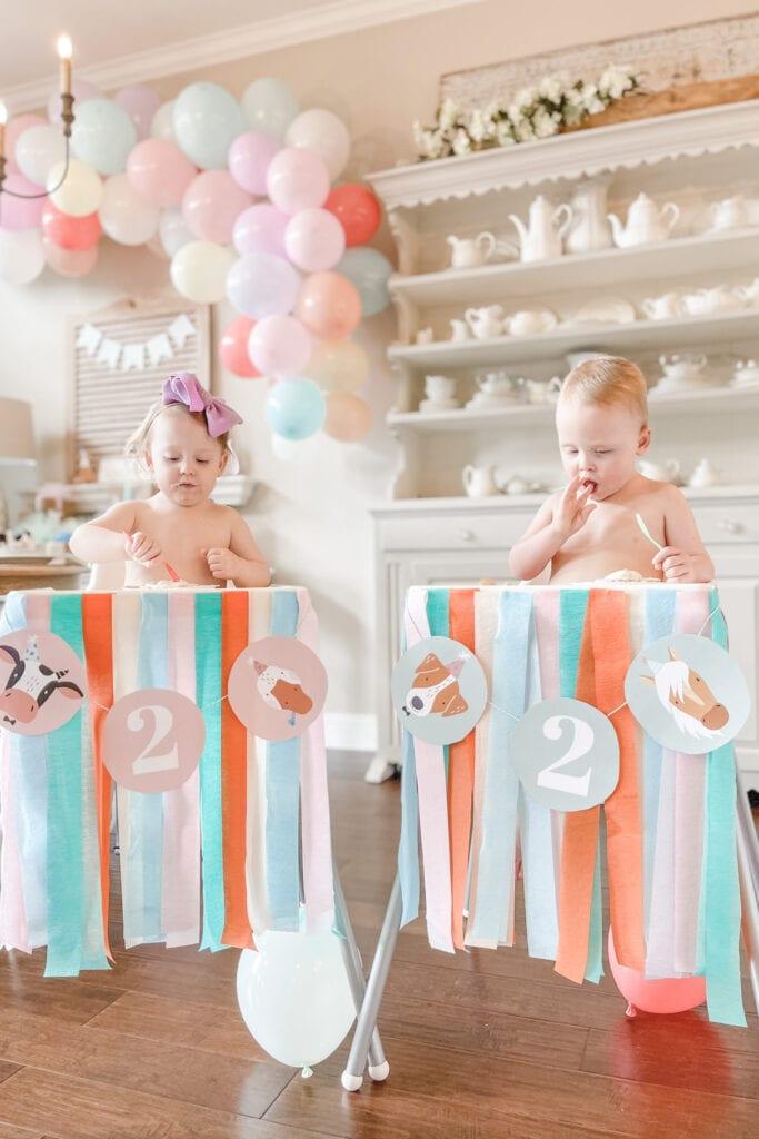 Sugar free smash cake, Party Animal Theme Party Ideas, Farm Animal Party, Twin Birthday Party, Boy Girl Birthday Party, BG Birthday Party from Live Oak Nest