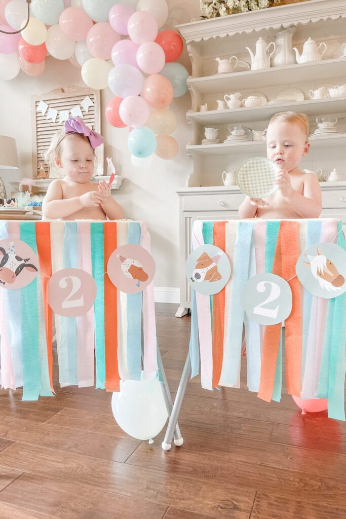 High Chair Skirt with Streamers, Party Animal Theme Party Ideas, Farm Animal Party, Twin Birthday Party, Boy Girl Birthday Party, BG Birthday Party from Live Oak Nest