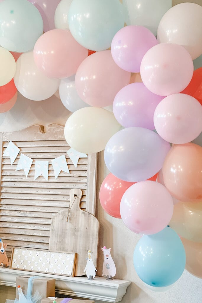balloon arch kit, Party Animal Theme Party Ideas, Farm Animal Party, Twin Birthday Party, Boy Girl Birthday Party, BG Birthday Party from Live Oak Nest