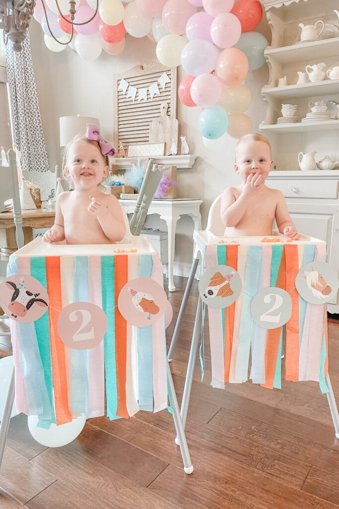 Twins Two Year Birthday Party, Party Animal Theme Party Ideas, Farm Animal Party, Twin Birthday Party, Boy Girl Birthday Party, BG Birthday Party from Live Oak Nest