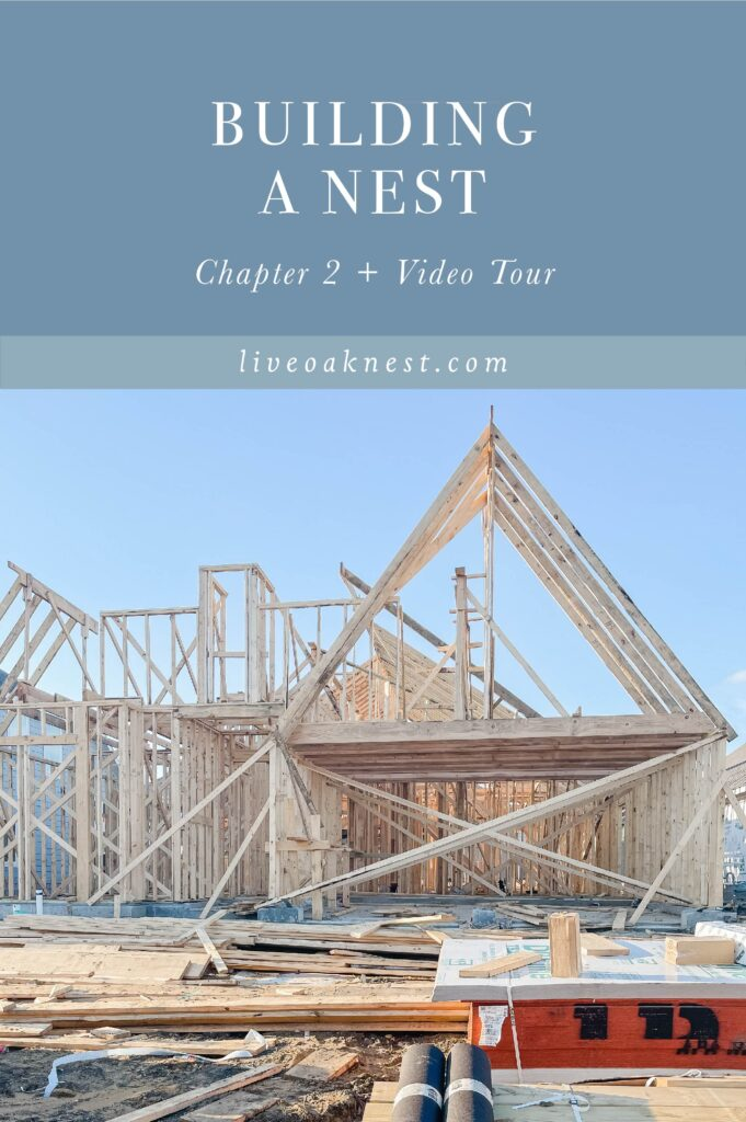 Live Oak Nest Building A Nest Chapter Two